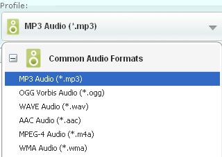 Select output audio formats for converting aa