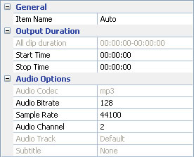 Set output audio parameters for converting aa