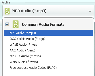 convert video to audio